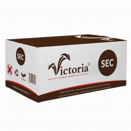 Victoria Sec